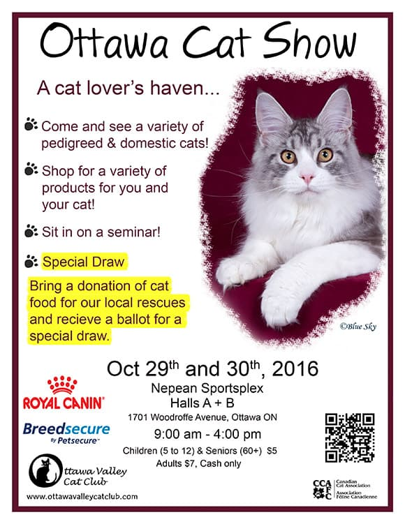 Ottawa 2016 Cat Show