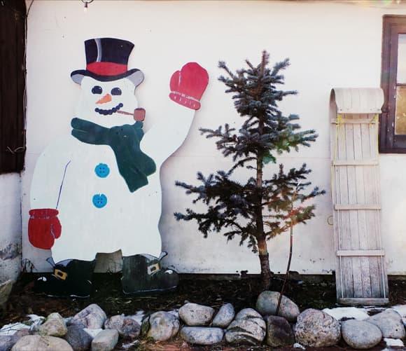 - A List Of Christmas Tree Farms Around Ottawa · OttawaStart.com